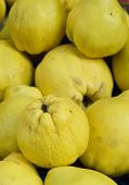 Quinces At The Local Market