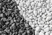 Background Of Black And White Pebbles. The Stones Lie Side By Side. poster