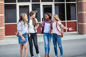 Candid photo of a group of teenage girls socializing, laughing and talking together at school. A mul poster