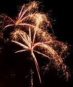 Fireworks1904