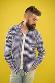 Charismatic Man With Beard On Yellow Background. Male Fashion And Spring Style. Mature Serious Man.  poster