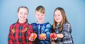 We Are What We Eat. Healthy Children. Small Group Of Children Enjoy Fresh Eating Apples. Little Chil poster