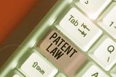 Word Writing Text Patent Law. Business Concept For Deals With An Inventor S Is Exclusive Right To Us poster