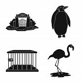 Vector Design Of Fauna And Entertainment Icon. Set Of Fauna And Park Stock Vector Illustration. poster