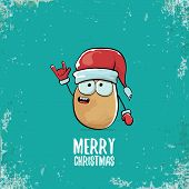 Vector Funky Comic Cartoon Cute Smiling Santa Claus Potato Character With Red Santa Hat And Calligra poster