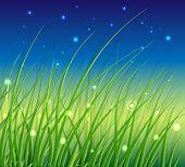stock photo of fireflies  - Night Vector Scene on the Fresh Meadow with Fireflies - JPG