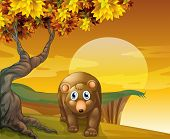Illustration of a brown bear beside a big tree near the cliff