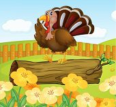 Illustration of a turkey above the wood inside the fence