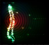 pic of spines  - Colorful spine - JPG