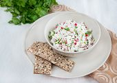 Fresh cheese salad with radish and herbs