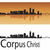 Corpus Christi Skyline