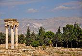 Ruins Of The Umayyad City Of Anjar In Bekaa Valley In Lebanon