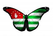 Abkhazia Flag Butterfly Flying, Isolated On White Background