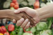 African Or Black American Woman Handshake Traditional Market Deal In Township