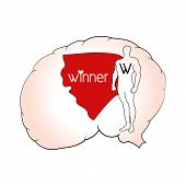 Brain winner - inner winner vector