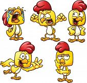 Cartoon chicken in different poses. Vector clip art illustration with simple gradients. Each pose on