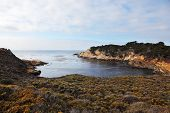 A little cool lagoon in the reserve Point Lobos on the Pacific Ocean. USA, California