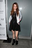LOS ANGELES - NOV 7:  Dani Thorne at the Flaunt Magazine November Issue Party at Hakkasan on November 7, 2013 in Beverly Hills, CA\