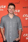 LOS ANGELES - NOV 6:  Sterling Knight at the CRUSH by ABC Family Clothing Line Launch at London Hotel on November 6, 2013 in West Hollywood, CA