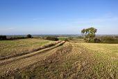 Scenic Farm Track