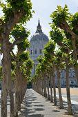 San Fransisco Town Hall