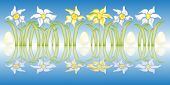 Daffodils Shelves With Mirror