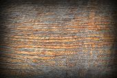 Ancient Oak Wood Texture