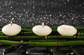 Three candle with green bamboo grove on wet background