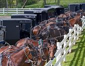 Amish Parking Lot