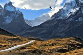 Grandiose landscape in the Chilean Andes. The road between turned yellow hills goes to snow-covered