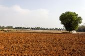a farmland area with the soil ploughed to get ready for rains