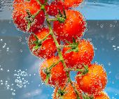 Tomatoes in the water with air bubbles on a blue background
