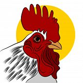 An image of a red rooster.