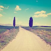 picture of farmhouse  - Dirt Road Leading to the Farmhouse in Tuscany Instagram Effect - JPG