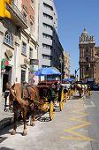 Horse drawn carriage, Malaga, Spain.