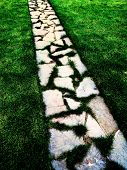 Detail of cobblestone walking foot path with lush green grass garden