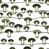Green gray edible mushrooms autumn seasonal seamless pattern with horizontal lines on white