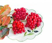 Clusters Of Berries Of A Guelder-rose And Autumn Leaves On A White Background.