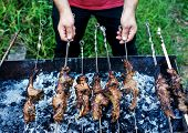 picture of brazier  - Man prepares a tasty shish kebab on a brazier on fire - JPG