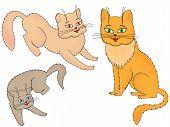 Three Funny Cartoon Cats