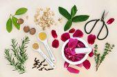 Love potion ingredients over mottled cream background.