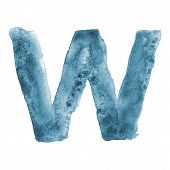 Watercolor vector capital letter W