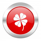 four-leaf clover red circle chrome web icon isolated