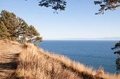 Footpath Along The Shore Of Lake Baikal
