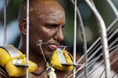 BATU CAVES, MALAYSIA, FEBRUARY 07, 2012: Hindu devotee in annual Thaipusam religious festival in Bat