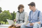 Young male college friends with laptop studying together in park