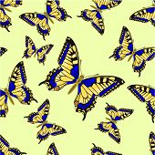Seamless Texture Butterfly Inachis Io Vector