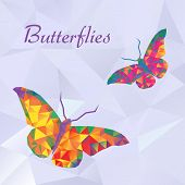 pic of insect  - Vector butterflies color couple geometric - JPG