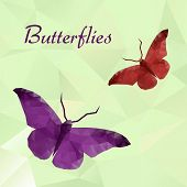 Vector butterflies color geometric.