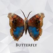 Vector butterfly brown geometric.